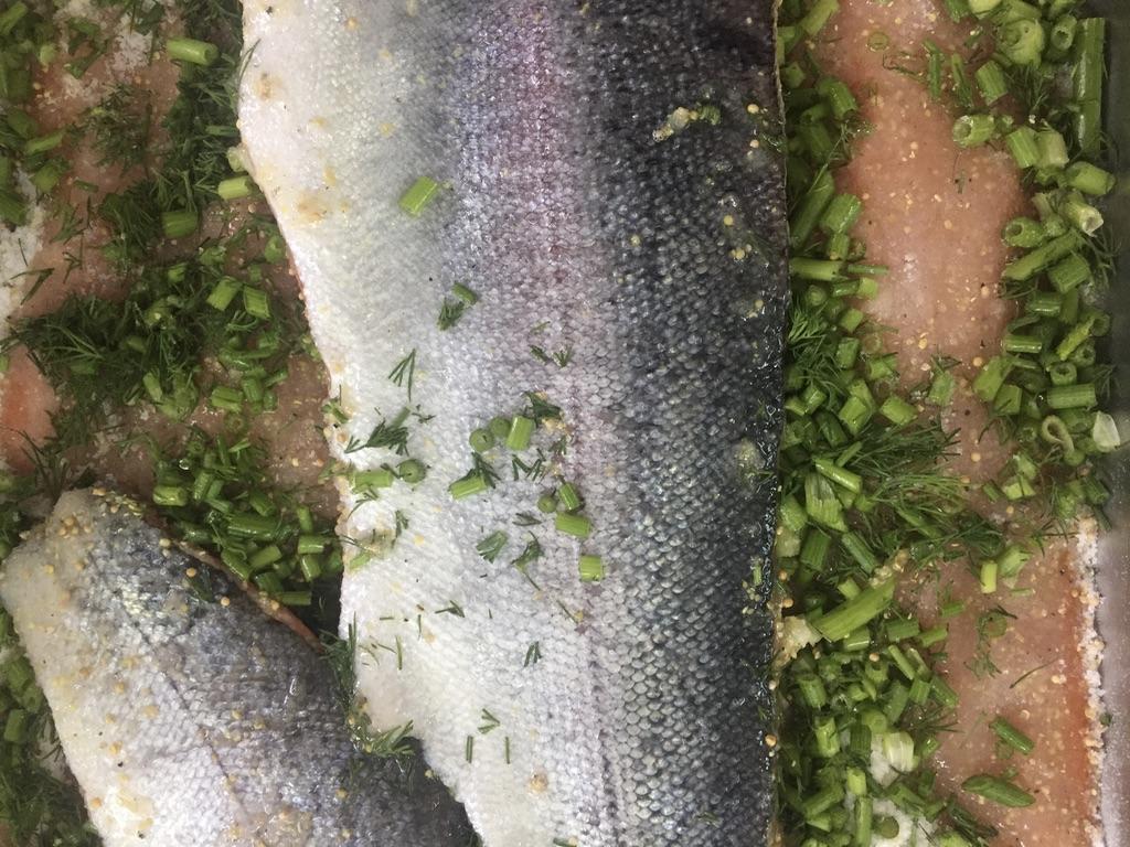 Fisch Heringsschmaus Wein Weingarten Haselgraben Manfred Georg Friedl